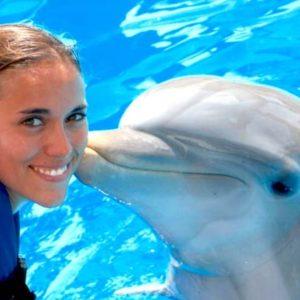 paquete 3 delfines vip
